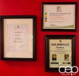 #BramptonTweetup — Awards and Honours