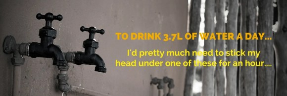 #CarlsCrew x Subway Canada Help Me #BuildAWinner!—TO DRINK 3.7L OF WATER A DAY... I'd pretty much need to stick my head under one of these for an hour....