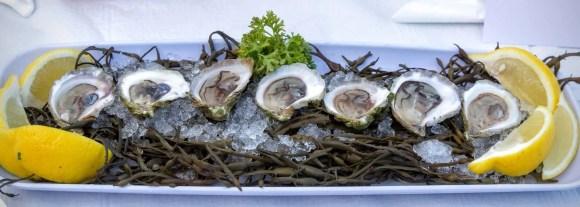 Stop Being So SHELLFISH! #LobstahPalooza2015—An Adventure in Atlantic Ambrosia!—PEI Oysters