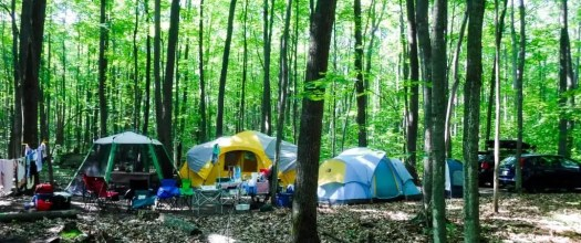 Better Camping with Coleman — The ONLY Way To Do It! — Palmer Family Awenda Provincial Park Campsite 2017