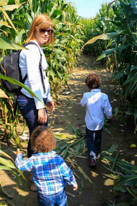 The 2017 100 — 31 Successes. — The Palmer Family at Whittamore Farm's Corn Maze