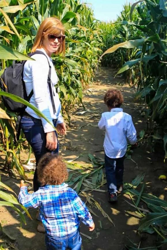The 2017 100 — 31 Successes. — The Palmer Family at Whittamore Farm's Corn Maze
