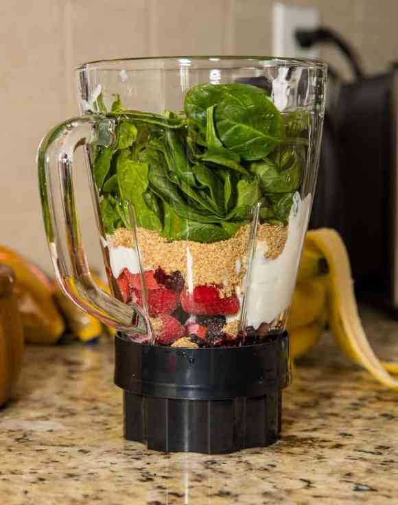 The Hamilton Beach Sound Shield 950 — The Perfect Blend to My Cooking Conventions! — A Shake Before it Blends