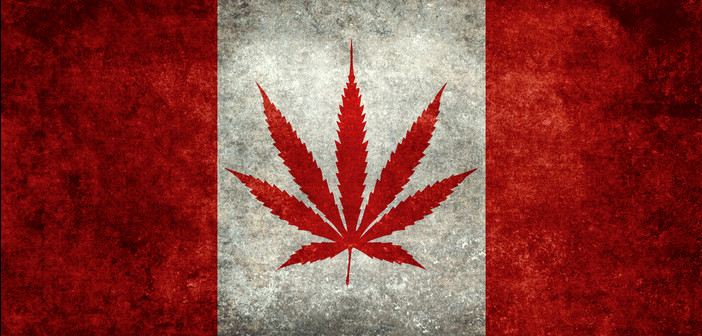 Should We Be Looking To Canada For Financial Cannabis Growth?