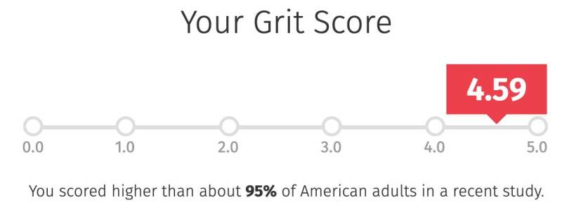 Grit Scale Score- Cashflow Cop Police Financial Independence