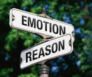 Take emotion out of it