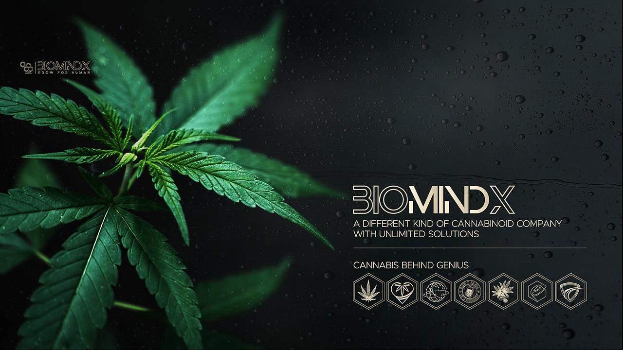 BioMindX Präsentation