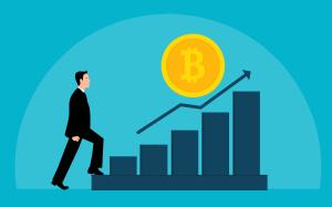 Bitcoin Bullrun im November 2020