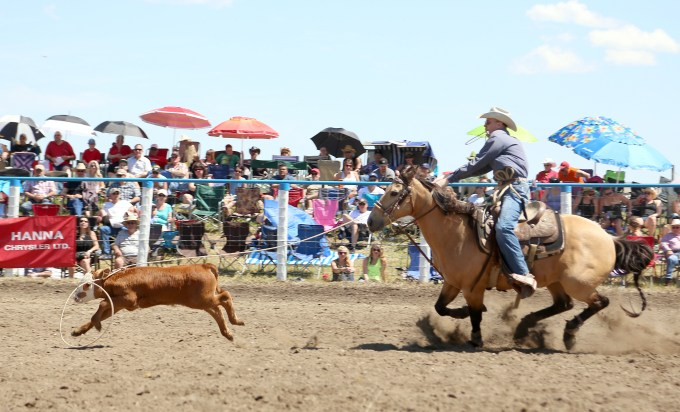 Hand Hills Rodeo 7
