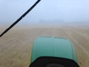 While planting DCB at the Dunn farm ( and just 15 minutes from being done!), the rain came and stopped the progress.