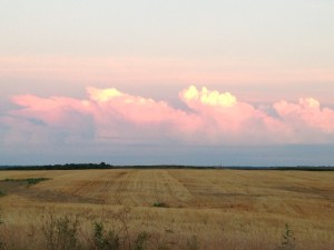 Tuesday evening, just about dusk, we were returning home from Bicknell... when these colorful clouds captured our attention.  The picture does not quite show the brilliant colors above this wheat/DCB field.