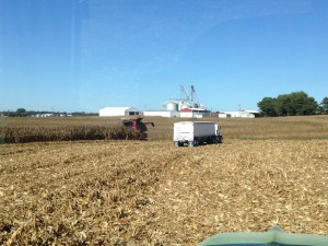Looking north from the back part of the main farm, on a good corn harvest day.
