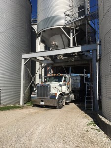 """John and Brandon load the Pete this afternoon for tomorrow morning's delivery to GPC.  The """"Vanna"""" truck is also loaded."""