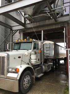 The Pete gets loaded to go to ADM Newburgh