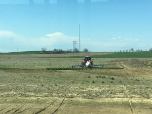 If you'll notice, there are no little puffs of white gas leaking from the soil.  That means the NH3 is sealing quite well!
