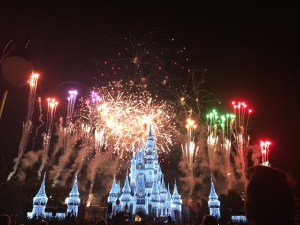 The 'Wishes' fireworks show is spectacular!