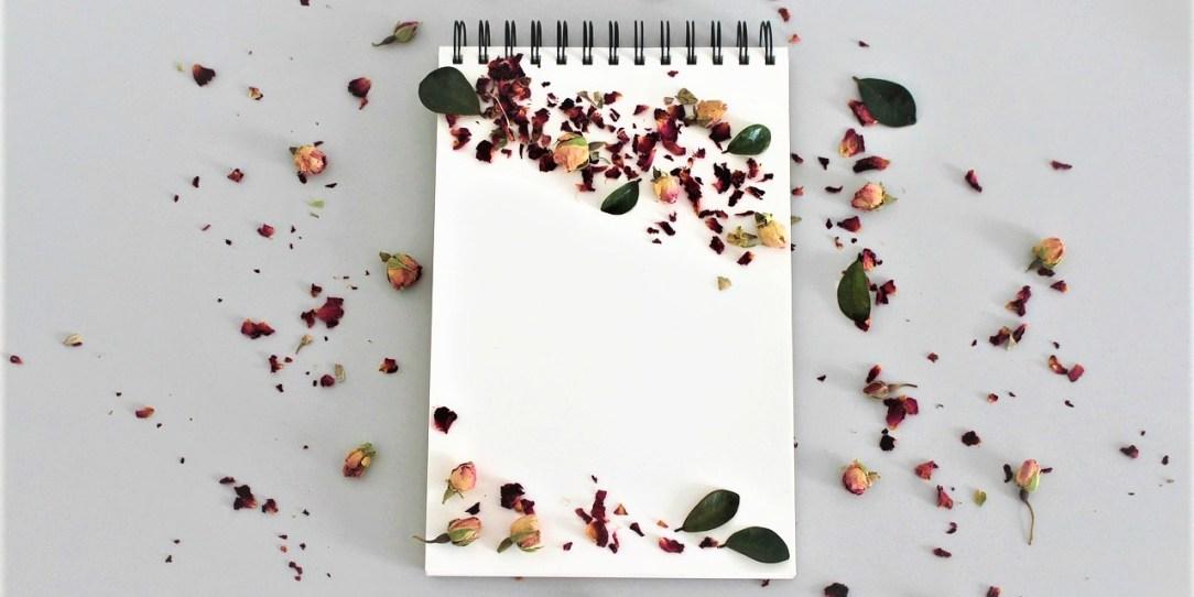 Disciplinada y creativa_ Casi literal