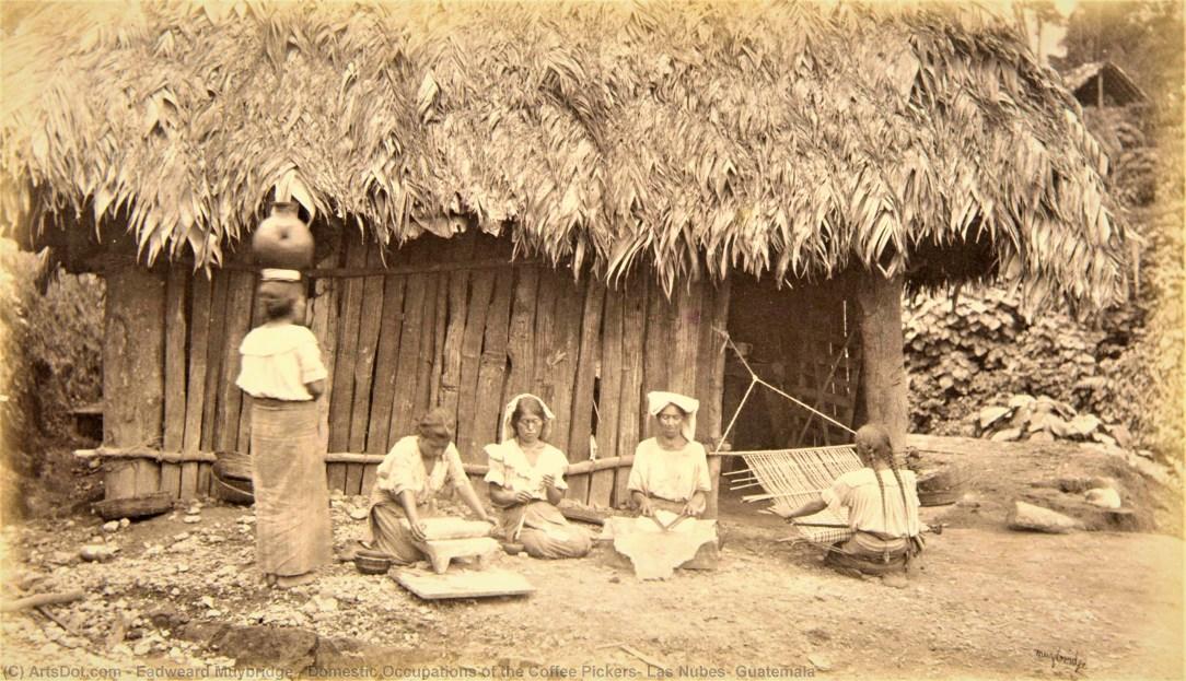 Fotografía y colonialismo_ Foto de Eadweard Muybridge_ Casi literal
