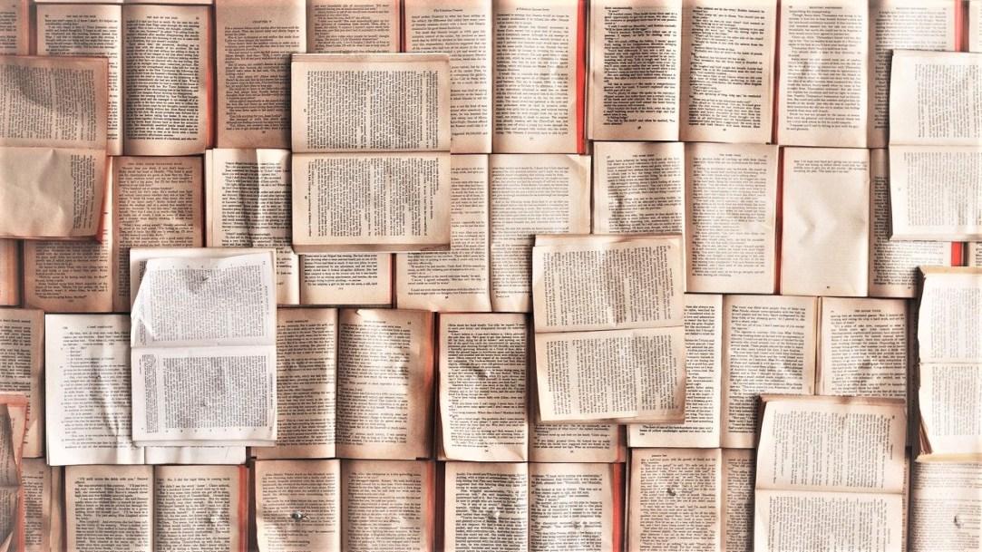 Sintomatología de una bibliofilia_ Casi literal