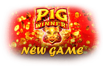 Fair Go Casino RTG Pig Winner