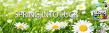 SlotoCash Casino Uptown Aces Uptown Spring into Luck Bonus Pack