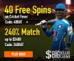 Big Dollar Casino 40 FREE Saucify Cricket Fever Spins plus 240% Match Bonus Special Offer