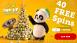 Two-up Casino 40 FREE Spins on RTG Panda's Gold Special Xmas 2020 No Deposit Promo