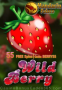 Mandarin Palace Online Casino 55 FREE Saucify Wild Berry Spins Exclusive Offer