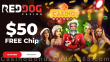 Red Dog Casino $50 FREE Chip Christmas 2020 No Deposit Super Offer RTG Epic Holiday Party