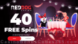 Red Dog Casino 40 FREE RTG Enchanted Garden Spins Special St. Valentine's Day No Deposit Offer