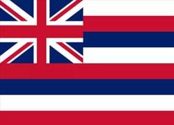 Hawaii State Flag - Casino Genie