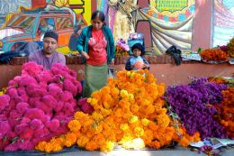 Muertos flower vendors at Sanchez Pascuas. Oct. 31, 2013.