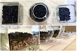 terrarium charcoal