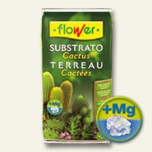 SUSTRATO CACTUS 5L FLOWER