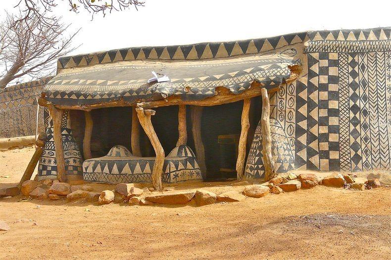 case africa8