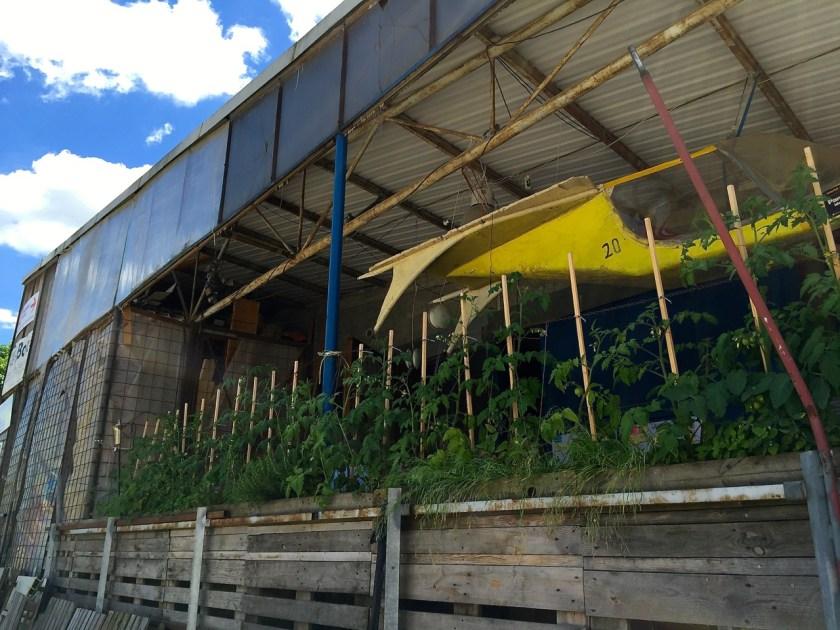 Hier werden Pflanzentröge nicht nur gebaut, sondern auch gleich getestet. ©casowi