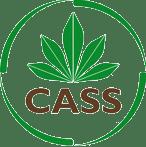 Cassava Source-Sink Project
