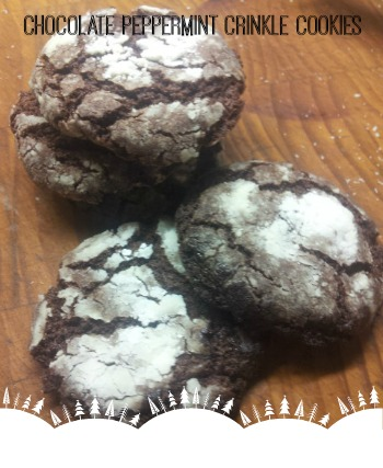ChocPeppermintCrinkle