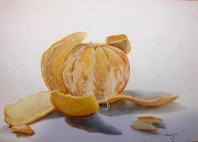 mandarin. colour pencil. 21x29cm