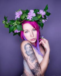 Wild Rose 3