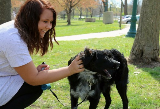 Photoshoot with Andrea Labenz and her 1-year-old Austrailian Shepherd, Jax, taking a walk at Elmwood Park ( by Cassidy Conrad)