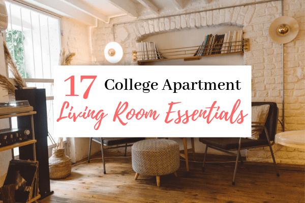 College Apartment Living Room Ideas   17 College Apartment Living Room Essentials