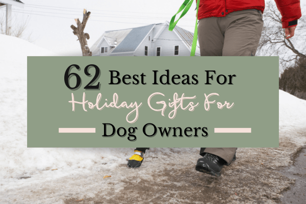 Gifts For Dog Lovers   Best Gifts For Dog Owners