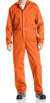 college group halloween costumes inmates