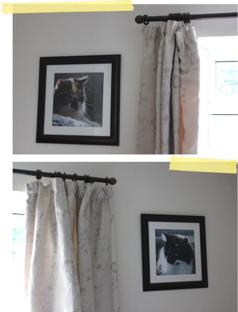 diy making large wall art cat poster prints printed com