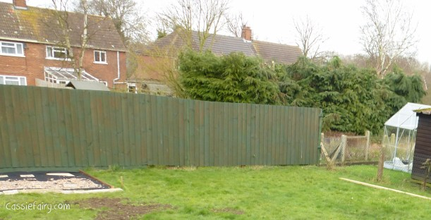 Garden makeover - new fence -1