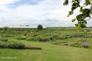 Jimmy Doherty Farm in Suffolk-16