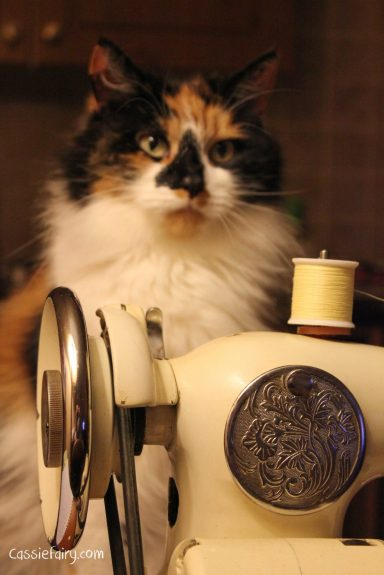 cats always help with crafts