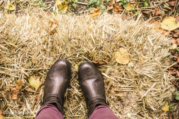 autumn colours and leather boots-9