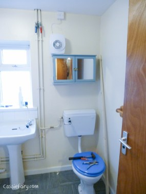 bathroom before the makeover